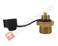 Клапан контрольного вивода RENAULT DAF MAN SCANIA MAZ  MERCEDES VOLVOМ22*1.5 4637031030 / 4637031150, фото 1