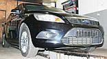Декоративно-защитная сетка радиатора Ford Focus II фальшрадиаторная решетка, бампер, фото 4