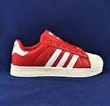 Кроссовки Adidas Superstar Красные Адидас Суперстар Женские Адидас (размеры: 36,37,38,39,40,41) Видео Обзор, фото 2