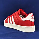 Кроссовки Adidas Superstar Красные Адидас Суперстар Женские Адидас (размеры: 36,37,38,39,40,41) Видео Обзор, фото 4