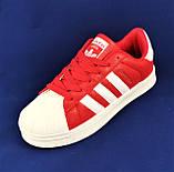 Кроссовки Adidas Superstar Красные Адидас Суперстар Женские Адидас (размеры: 36,37,38,39,40,41) Видео Обзор, фото 6
