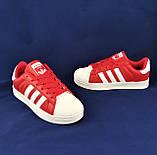 Кроссовки Adidas Superstar Красные Адидас Суперстар Женские Адидас (размеры: 36,37,38,39,40,41) Видео Обзор, фото 8