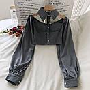 Женская блуза бюстье с чокером - воротником и рукавами фонариками (р. 42-44) 68ru408, фото 4