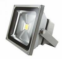 Світлодіодний прожектор (Floodlights)FL-10W-CW 24VDC /2Y/