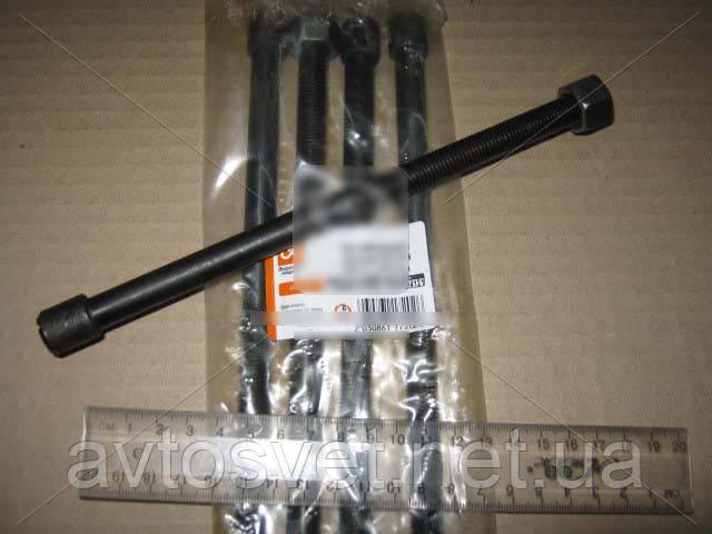 Болт стяжний задн. ресори Еталон М12х11 L=210mm DK11084112706