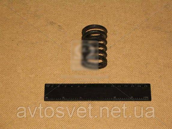 Пружина клапана ЗИЛ 130 130-1007020-А, фото 2