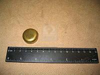 Заглушка головки блока цилиндров МАЗ (пр-во ЯМЗ) 313934-П