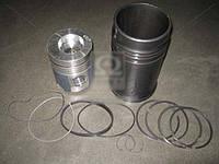 Гильзо-комплект ЯМЗ 240ПМ2 (гильза(фосф), поршень(траф.)+ к-т п/колец)(без пальца) гр.Б(МОТОРДЕТАЛЬ 240П-1004005-В