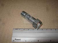 Клапан крышки топливного фильтра Эталон Е-2 большой (RIDER) RD252509120215