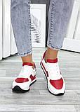Кроссовки кожаные Red Cat 7516-28, фото 4