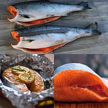 Риба делікатесна