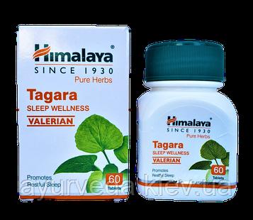 Тагара, Tagara, Тагар - бессонница, укрепление нервной системы, стресс, истерией