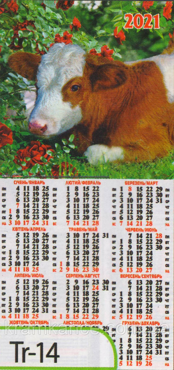 Календар листовий формату 1/3 «третинка» на 2021 рік  Tr-14
