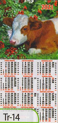 Календар листовий формату 1/3 «третинка» на 2021 рік  Tr-14, фото 2
