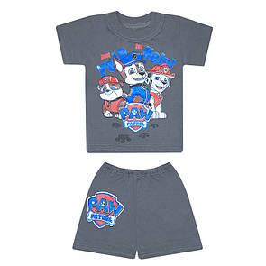 Комплект дитячий футболка+шорти Щенячий патруль для хлопчиків кулір