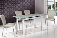 Стеклянный Стол обеденный Ирен, фото 1