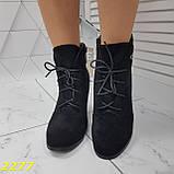 Ботинки замшевые на шнуровке классика широкий каблук, фото 7