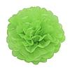 Декор бумажные Помпоны 25см зеленый 0013