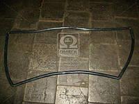 Ущільнювач скла вітрового (лобового) ВАЗ 2108 (БРТ)