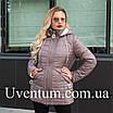 Подовжена куртка жіноча демісезонна великих розмірів 52,54,56 чайна троянда, фото 6