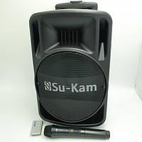 Портативная колонка Su-Kam BT100D в комплекте с микрофоном BT 12v\220v, фото 1