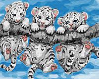 Картины красками по номерам на холсте рисование картин по номерам Маленькие тигрята 40х50 см