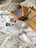 TIME OUT LV ESCALE  Женские осенние белые кожаные кроссовки. Женские кроссовки на шнурках, фото 4