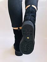 Polann, Зимние ботинки на натуральном меху. Р.36, 38, фото 5