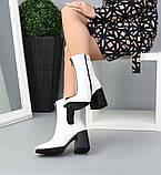 Белые кожаные ботильоны под рептилию с квадратным носком демисезонные женские, фото 3