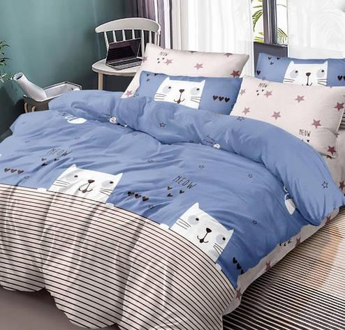 Комплект постельного белья Полуторный 150Х220 Хлопок 100% Поплин 203007, фото 2