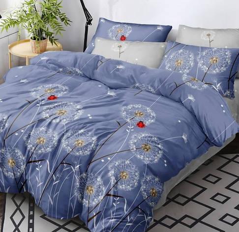 Комплект постельного белья Полуторный 150Х220 Хлопок 100% Поплин 203017, фото 2