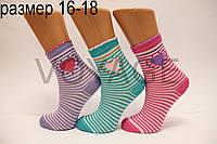 Подростковые носки средние с хлопка Стиль Люкс  16-18  832(032)