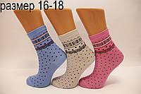 Подростковые носки средние с хлопка компютерные Стиль Люкс  16-18  833 (033)