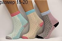Подростковые носки средние с хлопка Стиль Люкс  18-20  883
