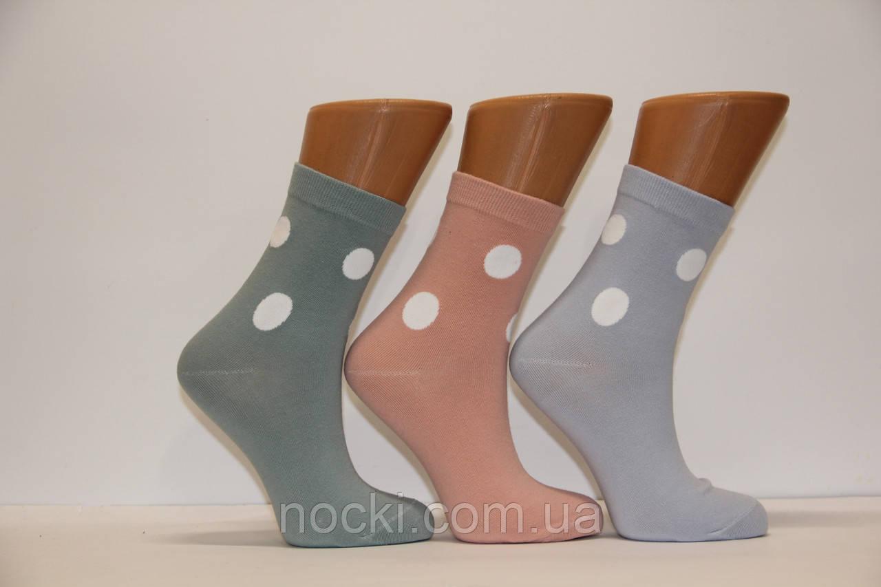 Женские носки средние компютерные BY232,212 КОРОНА 37-41  BY212 горохи