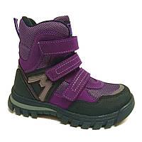 Демисезонные ботинки для девочки, фиолетовые (1957-44-20B-11), Мinimen (Минимен) 33 р. Фиолетовый