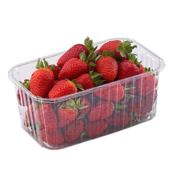 Пластиковый лоток для ягоды 500 грамм ПЭТ 193*117*53 см