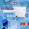 """""""BR"""" (новый Брэйн-О-Флекс) - для улучшения работы мозга и памяти (new Brain-O-Flex), фото 8"""