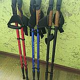 Палки для скандинавской ходьбы NORD STICKS телескопические, фото 2