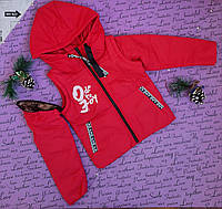 Подростковая куртка на девочку на рост 134-164, фото 1