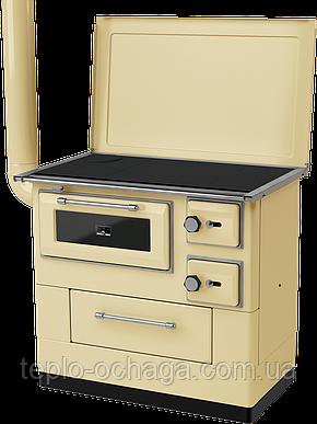 Дровяная печь-кухня MBS-10 New Line, фото 2