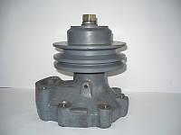 Насос водяной Д442  (10-13с3-2А)