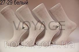 Чоловічі шкарпетки високі стрейчеві Житомир бізнес клас 27-29 білий