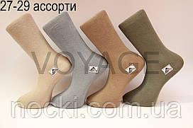 Чоловічі шкарпетки високі стрейчеві Житомир бізнес клас 27-29 асорті