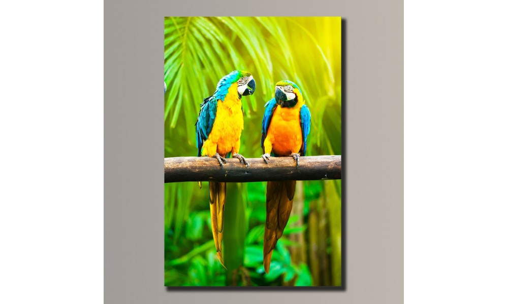 """Картина на холсте Holst Art """"Попугаи"""" (HAS-068)"""