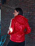Женская куртка с капюшоном плащевка+синтепон размер: 48-50, 50-52, 52-54, фото 4