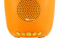 Портативная Bluetooth колонка Dancing Flower G26 Orange, фото 4