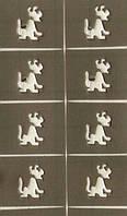 Трафарет для маникюра для дизайна ногтей собачка