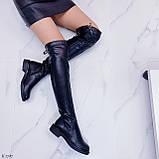 Женские черные ДЕМИ / осень сапоги- ботфорты эко- кожа, фото 3
