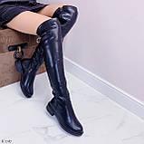 Женские черные ДЕМИ / осень сапоги- ботфорты эко- кожа, фото 9